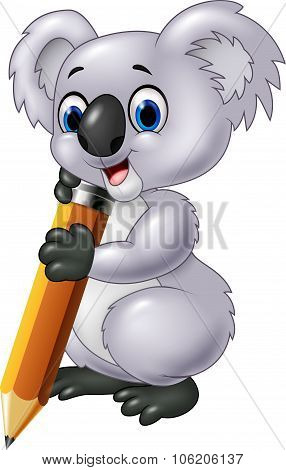 Cute koala holding pencil isolated on white background