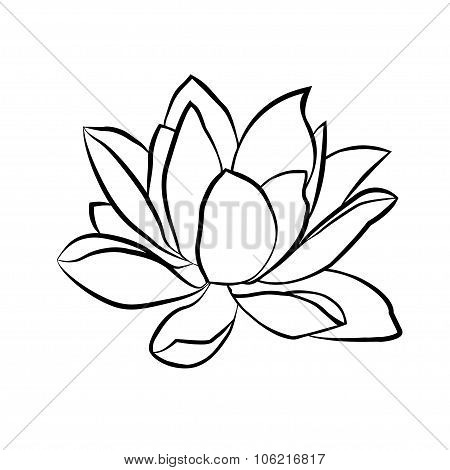 Lotus Flowers Icon