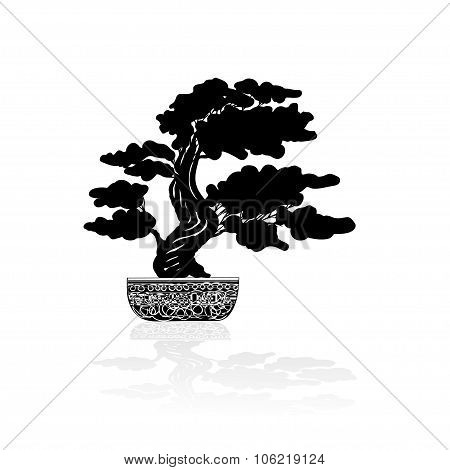 Bonsai Silhouette Over A White Background