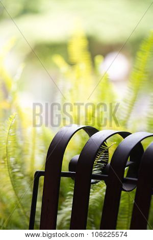 black metal chair in natural garden