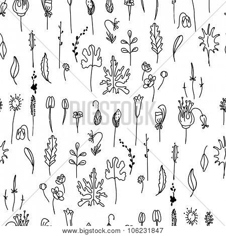 Seamless pattern with floral seeds.Black and white.   Endless texture for your design, announcements, postcards, posters.