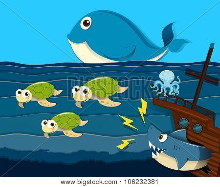 Shark attack ship under the sea illustration
