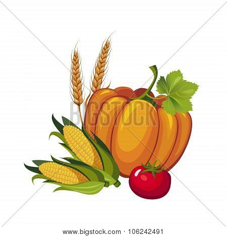 Harvest Pumpkin, Stalks and Tomato, Vector