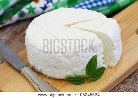 Curd cheese, closeup