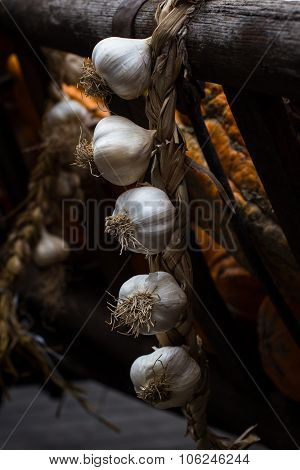 Festoon Of Cloves Of Garlic