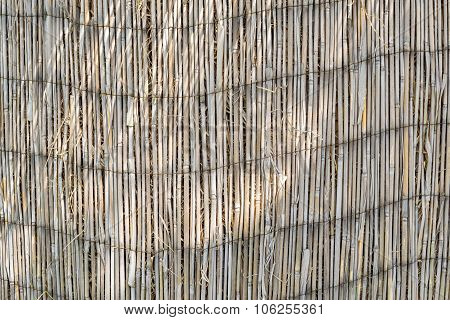 Texture Of An Old Reed Curtain