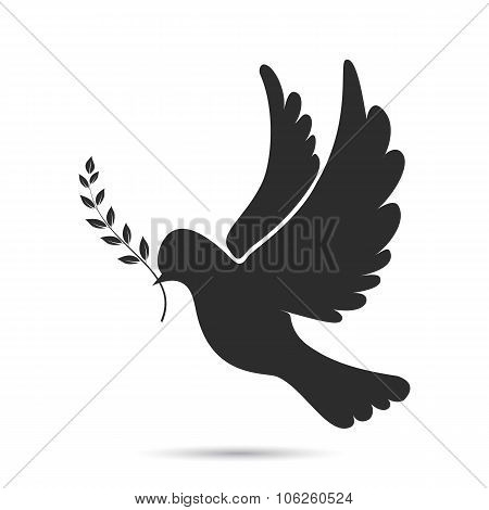 Icon of dove flying with olive twig in its beak
