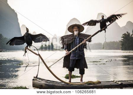 traditional cormorant fisherman showing of his birds on Li river near Xingping, Guangxi province, China.