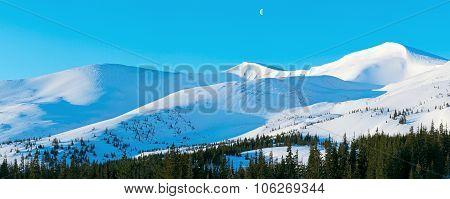 Winter Morning Mountain Panorama
