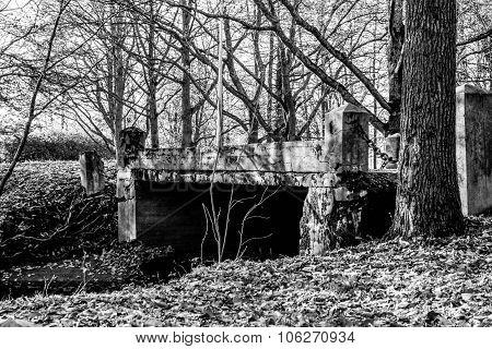 Stary Bridge