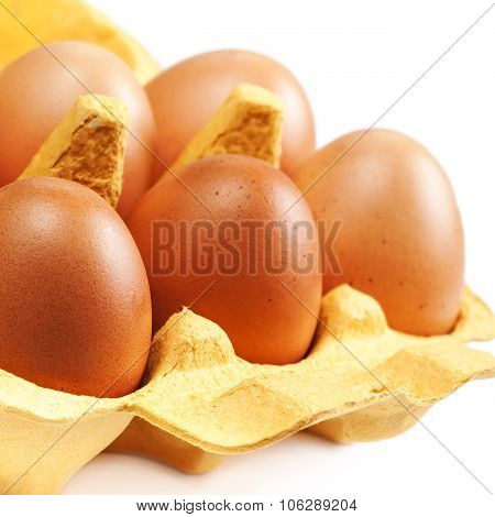 Brown Eggs Chicken Egg Isolated