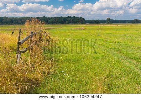 Late summer landscape in rural area in Ukraine