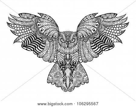 Zentangle stylized eagle owl.