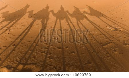 Shadows Of Camels In The Sahara