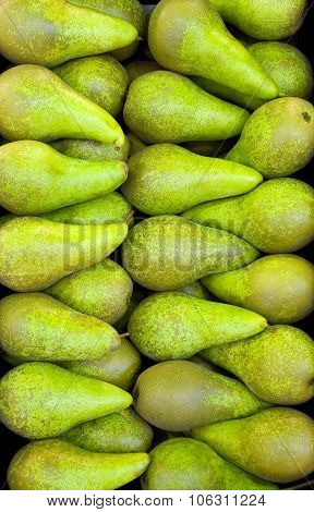 yellowish-green  Conference pears close-up