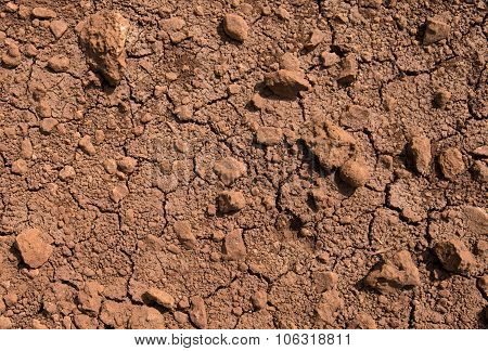 Large Cracks In Clay Soil Due To Water Evaporation