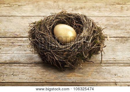 Golden egg in nest on vintage wooden background