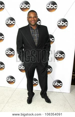LOS ANGELES - JAN 14:  Anthony Anderson at the ABC TCA Winter 2015 at a The Langham Huntington Hotel on January 14, 2015 in Pasadena, CA