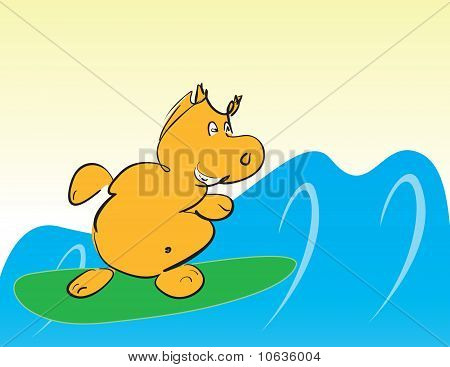 Hippo On Surfboard