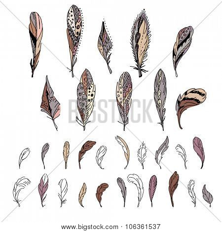 Set with bird feathers. For your design, announcements, postcards, posters.