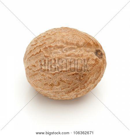Macro closeup of Organic Nutmeg Seed.