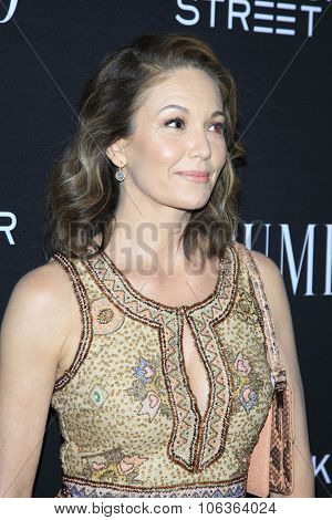 LOS ANGELES - OCT 27:  Diane Lane at the