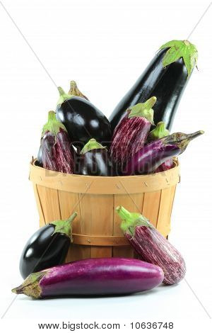 Assorted Eggplants In Bushel Basket On White.