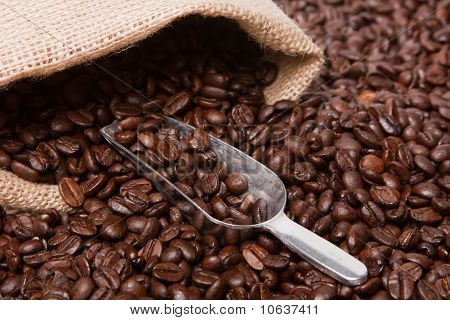Coffee Beans With Burlap Sack