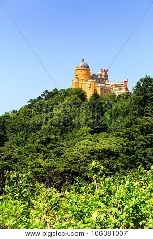 Modern castle standing on the green hill