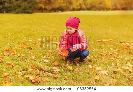 autumn, childhood, happiness and people concept - happy little girl collecting maple leaves outdoors