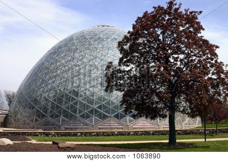 Greenhouse Glass Dome