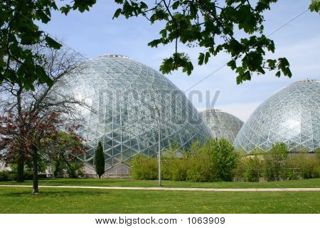 Large Domed Greenhouses