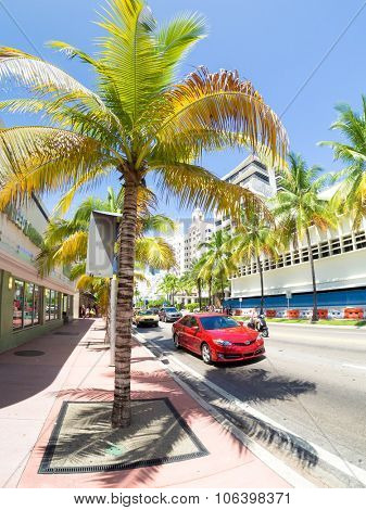 MIAMI,USA - AUGUST 8,2015 : Urban scene with tropical palms in Miami Beach