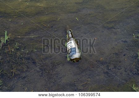 Beer Bottle in a Drainage Ditch