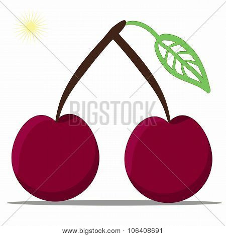 Cherry Coloful On White Background