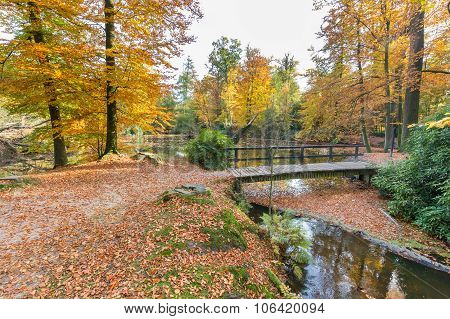 Forest Pond With Bridge In Autumn Colors