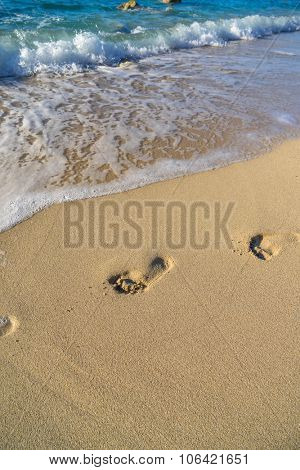 Footprints near the shoreline in the  sand on the beach
