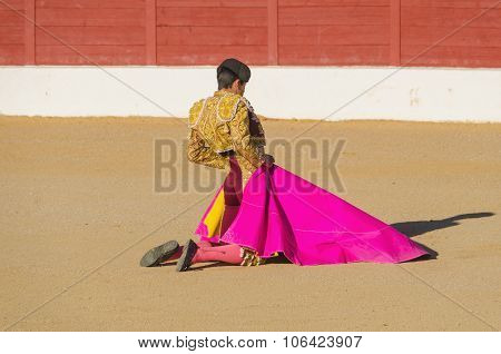 Spanish Bullfighter Awaiting The Bull