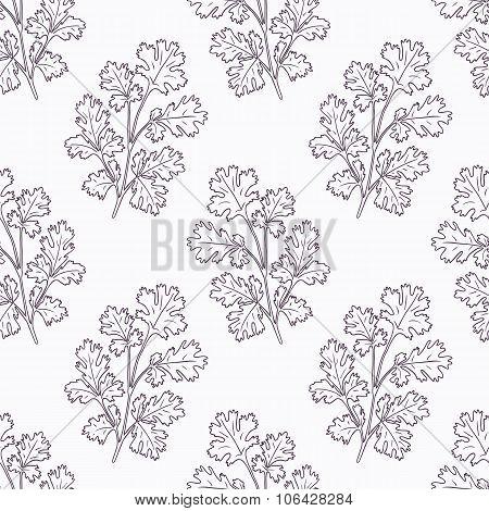 Hand drawn cilantro branch outline seamless pattern