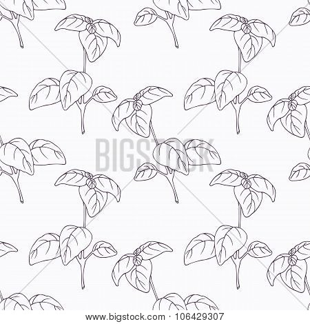 Hand drawn basil branch outline seamless pattern