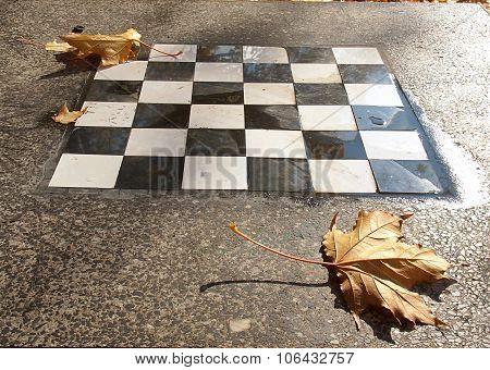 Checkerboard autumn.