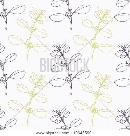 Hand drawn marjoram branch stylized black and green seamless pattern