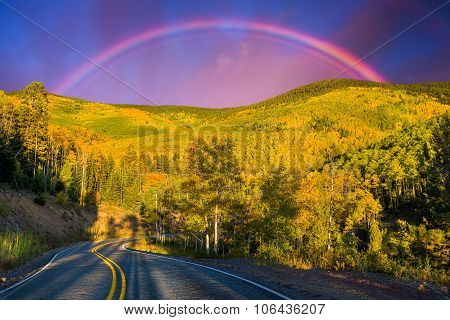 Rainbow Over An Aspen Forest