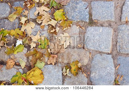 Granite paving stones and autumn leaves