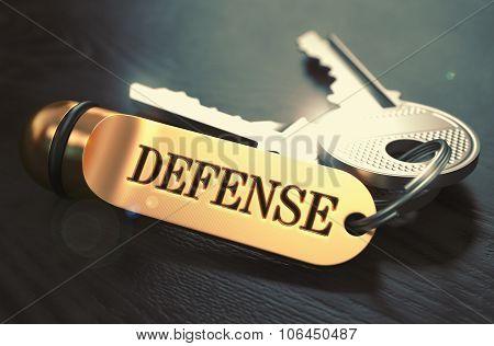 Defense Concept. Keys with Golden Keyring.