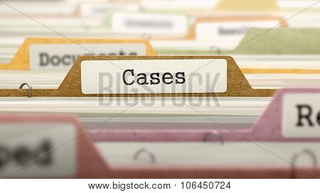 Folder in Catalog Marked as Cases.