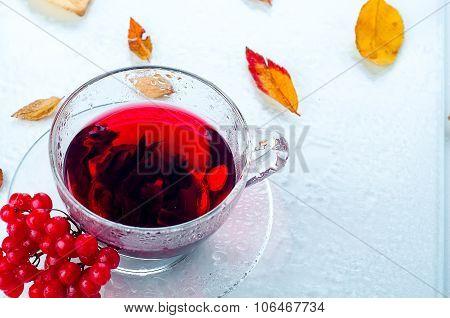 Red Berries  Viburnum And Cup Of Tea