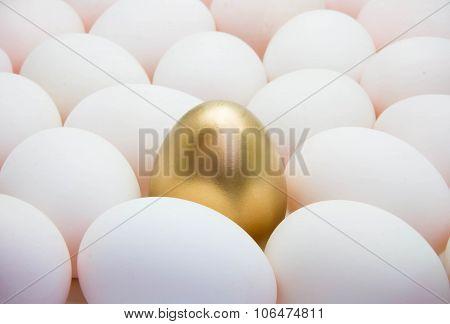 Golden Eggs With Duck Eggs