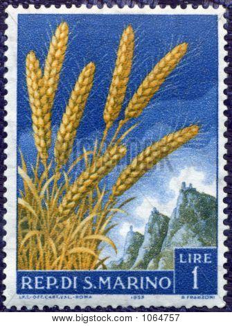 Rep San Marino Vintage Postage Stamp Circa 1958