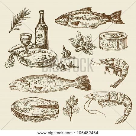 hand drawn sea food sketch
